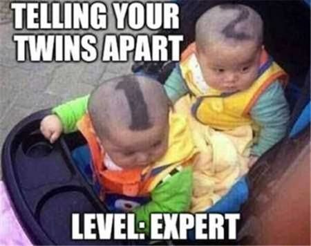 03_Telling_your_twins_apart_-_expert.jpg